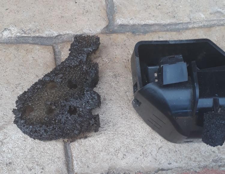 drain filter black